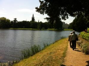 Lake, vineyards and a beautiful view at Worlitz.