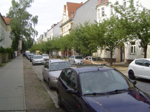 Another view of my street.